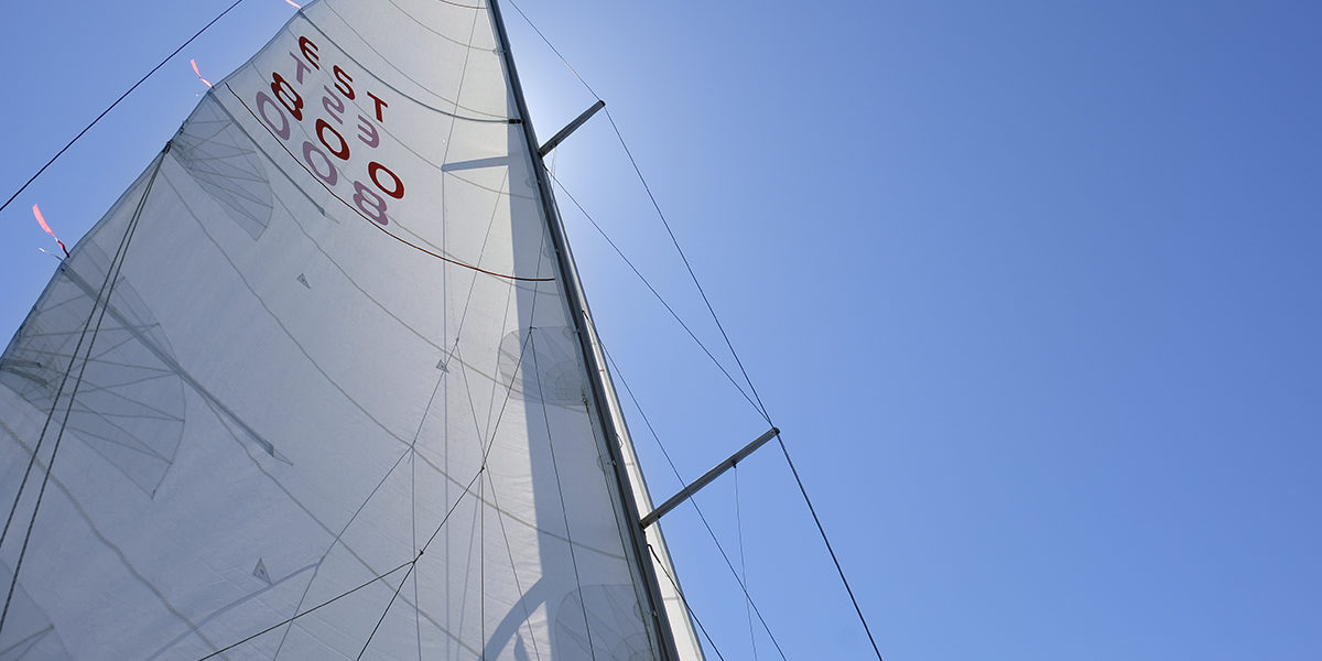 Sails with number EST 800