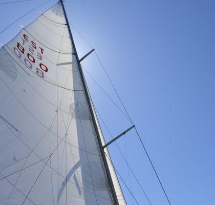 Sails with number EST 800